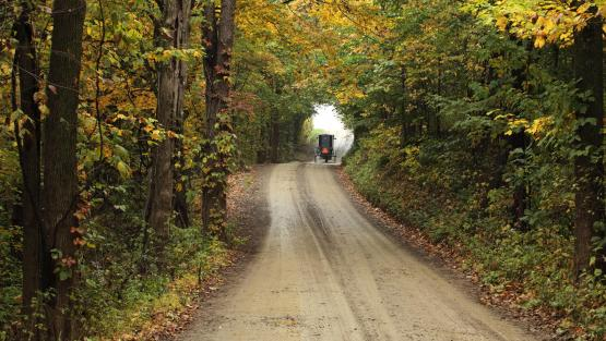 Amish Country Fall Foliage